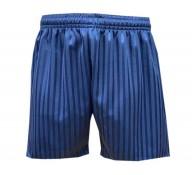 Navy Shadow Stripe Shorts