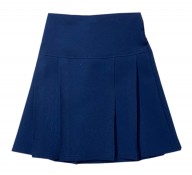 Navy Pleated Skirts